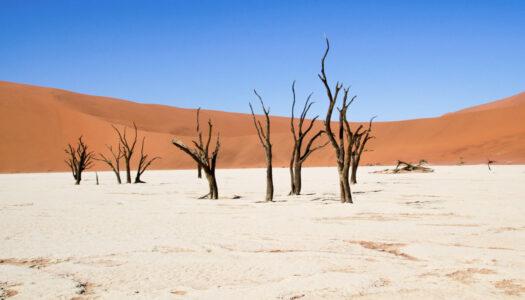 Namib Desert – 3 Days Itinerary