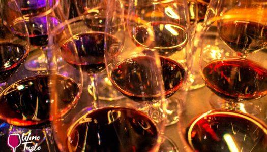 CHILE – CURSO, DESGUSTAÇÃO DE VINHOS E JANTAR – 5%OFF + BÔNUS* COM A WINE TASTE 360