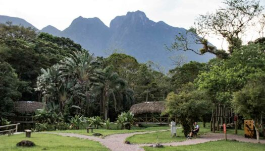 Learn about the Atlantic Forest and ecological practices at Ekôa Park in Brazil