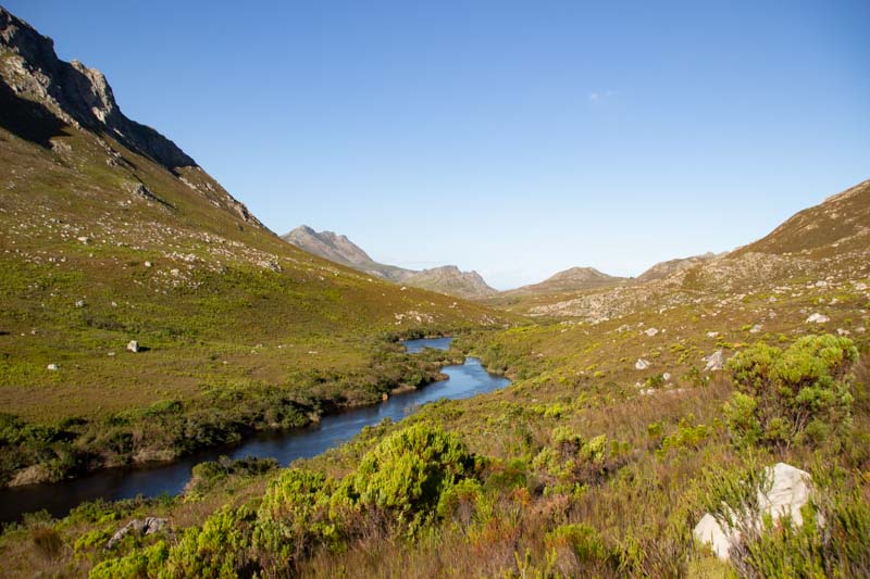 Kogelberg Nature Reserve - Cape Town