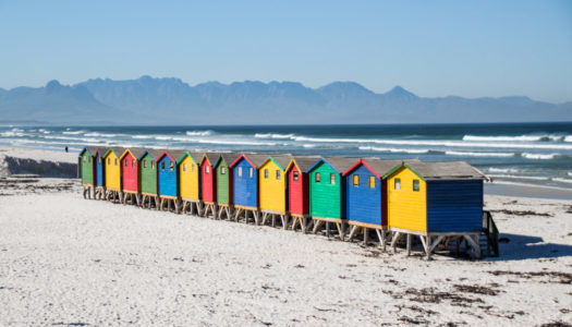 The best things to do in Cape Town, South Africa