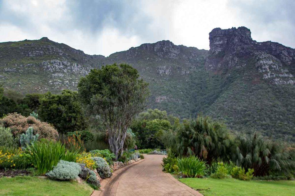 Botanical Garden Cape Town