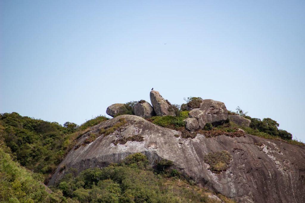 Pico do Selado: One of the best hikes in Monte Verde, Minas Gerais - Brazil