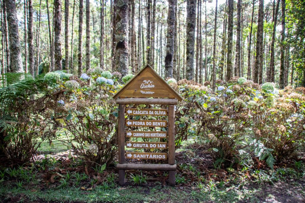 Parque Oschin Monte Verde MG