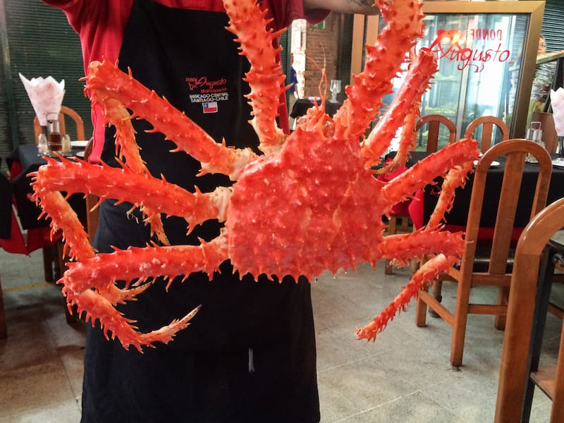 Centolla - The Chilean king crab at the Central Market of Santiago
