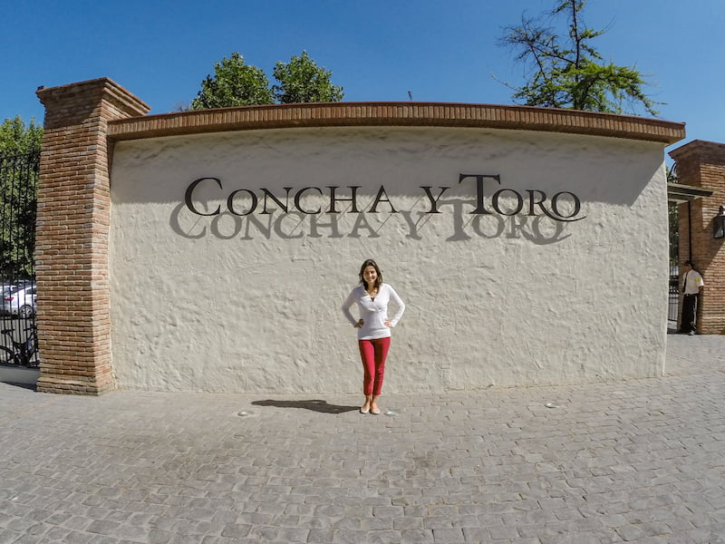 Concha y Toro - one of the best wineries near Santiago, Chile
